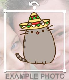 Decoración para tus fotos con un gatito gordo con sombrero mariachi