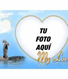 Marco para fotos dorado con forma de corazón junto con dos cisnes que se abrazan