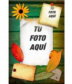 Collage para poner 2 fotos en unas hojas sobre madera decoradas con flores y hojas de árbol