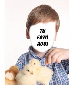Fotomontaje de un niño jugando con pollitos amarillos para poner tu cara