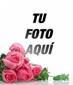 Fotomontaje con unas rosas rosas con un fondo blanco degradado para colocar tus fotos románticas