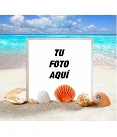 Marco para fotos marino para poner tu foto en una playa