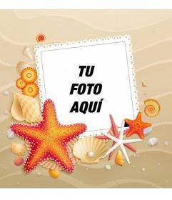 Personaliza tu avatar con un fondo de playa veraniego con estrellas de mar tanto para facebook como twitter
