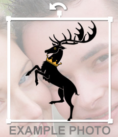 Pon este sticker en tus fotos si eres de la Casa Baratheon