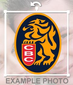 Logo del equipo de beisbol Los Leones del Caracas para pegar en tus fotos