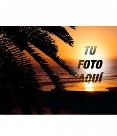 Pon tu foto online en una puesta de sol en un paisaje idílico de una playa