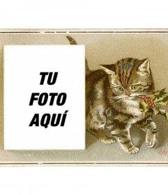 Tarjeta de navidad con un gato pardo vintage dibujado con un acebo en la boca y un recuadro donde colocar una fotografía
