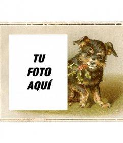 Tarjeta de navidad vintage con un perrito negro y marrón sonriente dibujado sujetando una rama de acebo con la boca