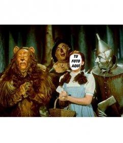 Conviértete en Dorothy, la Protagonista del Mago de Oz