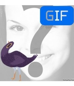 Animación gif del meme Trash Doves para poner tu foto de fondo