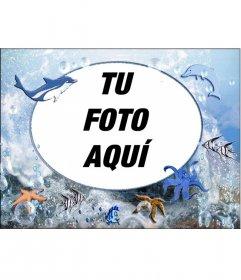 Marco para fotos redondo de animales marinos para poner tu foto. con pulpos, delfines y estrellas de mar
