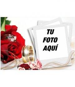Arreglo para insertar tu fotografía en un marco navideño, por el rojo de las rosas y el oro, colores típicos de la navidad