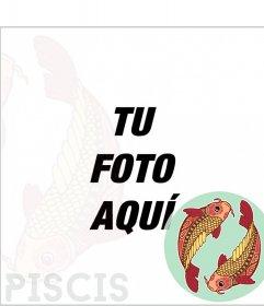 Marco del zodiaco Piscis con dos carpas de colores
