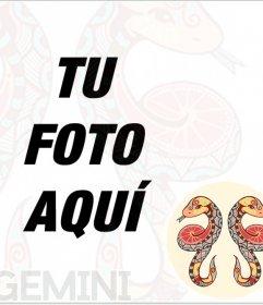 Marco de fotos del signo Géminis para insertar en tu foto de perfil