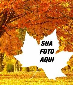 Colagem da foto de outono com um fundo de árvores e uma folha em forma de quadro. Faça suas fotos