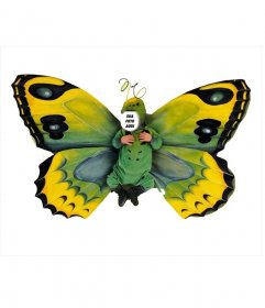 Fotomontagem de uma fantasia de borboleta para crianças pequenas