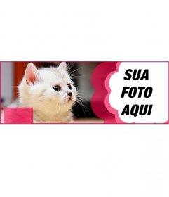 Personalizado facebook cobrir com um gato branco e uma flor rosa para colocar sua foto eo texto que você quer