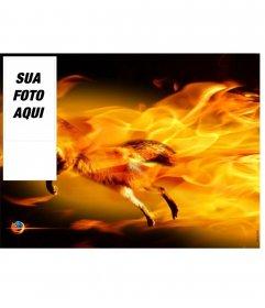 Insira sua foto para esta moldura com uma raposa cercado por chamas de fogo, cores laranja e preto