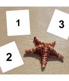 Colagem para editar com três fotos com uma estrela do mar e de graça