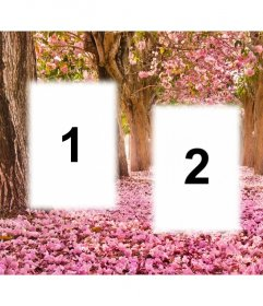Colagem livre para editar com três imagens e adicioná-los a uma paisagem florida