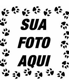 Pegadas de gato em torno suas fotos