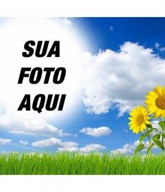 On-line efeitos para editar e adicionar sua foto em uma paisagem com margaridas