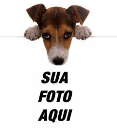 Efeito on-line de um filhote de cachorro bonito segurando sua foto