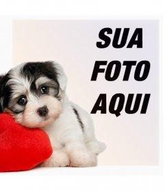 Efeito da foto de um filhote de cachorro com um coração para o seu