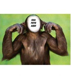 Fotomontagem de macaco que não ouve editar com sua foto