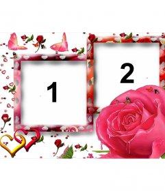 Moldura para duas fotos, motivos amorosos, como borboletas, rosas e corações. Fundo branco, a cor rosa predominante