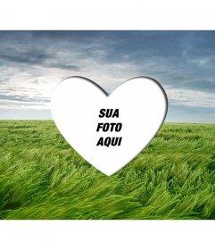 Amor lightframe para colocar um coração romântico imagem moldada em uma paisagem com campo de trigo verde e céu azul