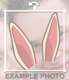 Adesivo para colocar algumas orelhas de coelho em sua foto