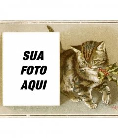 Cartão de Natal do vintage com gato marrom desenhado com um azevinho na boca e uma caixa para colocar uma fotografia
