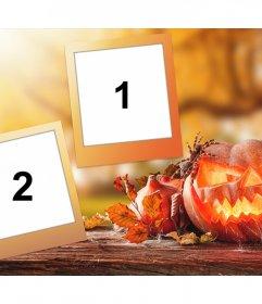 Foto collage di Halloween con una zucca decorativa e la sua libera