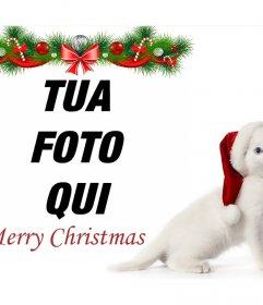 Effetto Foto di Natale con un gattino per caricare la tua foto