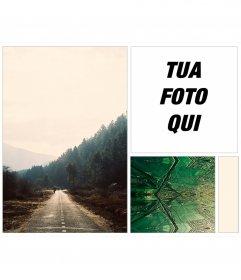 Collage di mettere la tua foto su uno sfondo di foresta e frattali indie