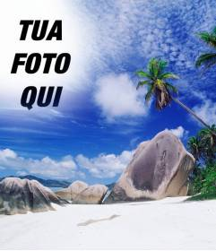 Fotomontaggio di fare un collage con la tua foto e il cielo di questa isola paradisiaca. Vedi palme dietro alcune rocce della spiaggia, un mare turchese e il cielo blu con chiazze di nuvole bianche