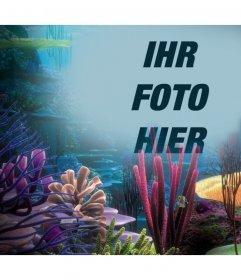 Ihr Foto auf dem Meer mit Korallen, laden Sie es einfach auf diese Fotoeffekt Online-