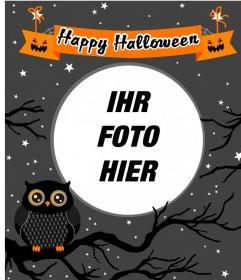 Halloween Bilderrahmen mit einer Eule