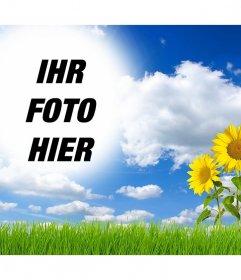Wirkung Online Ihr Bild in einer Landschaft mit Gänseblümchen zu bearbeiten und hinzufügen