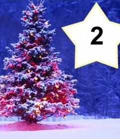 Weihnachtscollage mit einem Baum, um zwei Fotos setzen