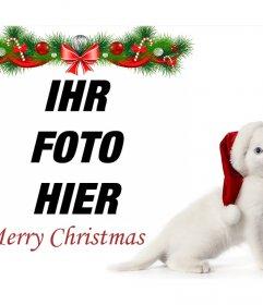 Weihnachtsfoto-Effekt mit einem Kätzchen zu laden Sie Ihr Foto