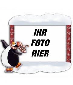 Fotorahmen mit Pinguin