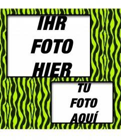 Erstellen Sie eine Collage mit grünen und gelben Zebra gemusterten und zwei Fotos online