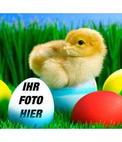Setzen Sie Ihr Bild an diesem Oster blaues Ei
