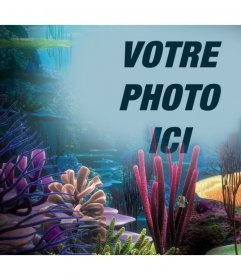 Votre photo sur locéan avec les coraux, il suffit de télécharger à cet effet de photo en ligne