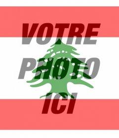 Drapeau du Liban à mettre sur votre photo de profil de réseautage social