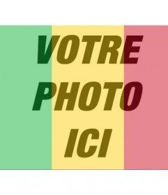 Drapeau du Mali à mettre dans votre profil de photos