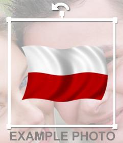 Agitant le drapeau de la Pologne que vous pouvez coller dans vos photos pour autocollant en ligne et décoratif