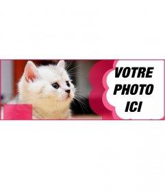 Coutume facebook couvrir avec un chat blanc et une fleur rose pour mettre votre photo et le texte que vous voulez